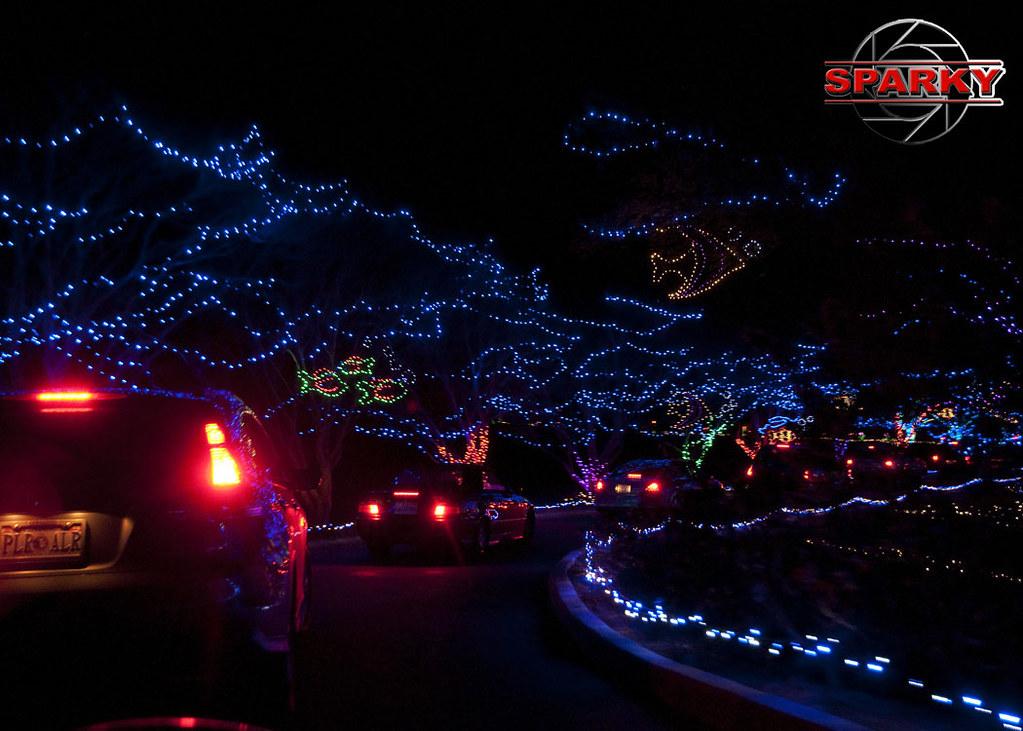 ... Norfolk Botanical Garden - Garden of Lights   by sparks1524