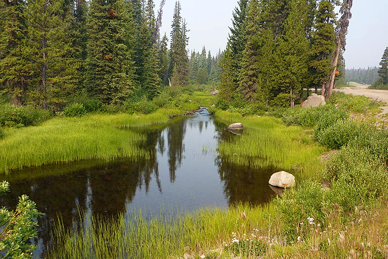Green River, near the boundary of Tweedsmuir South Provincial Park, Chilcotin, British Columbia, Canada