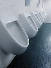 bathtub(0.0), toilet seat(0.0), ceramic(0.0), bidet(0.0), floor(1.0), toilet(1.0), urinal(1.0), plumbing fixture(1.0),