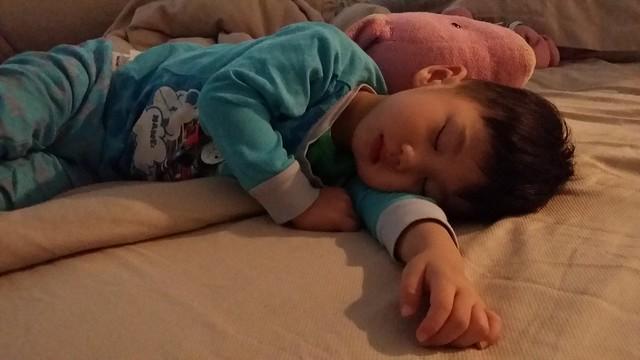 a sleeping jerry choo