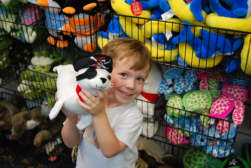 Son holding up a stuffed pirate seal in the Gulfarium gift shop