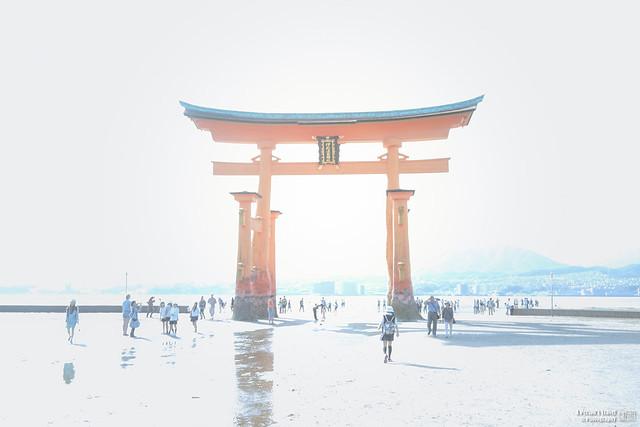 初夏.西日本