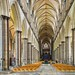Salisbury Cathedral, Wiltshire by JackPeasePhotography