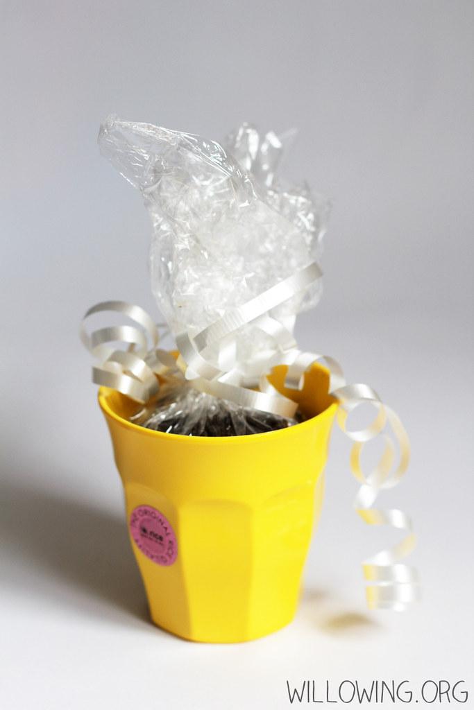 Eco-friendly Gift Idea 2
