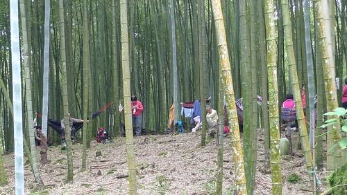 20140622-溪頭-武岫農場 (87)