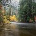 Yosemite High Water by Kirk Lougheed