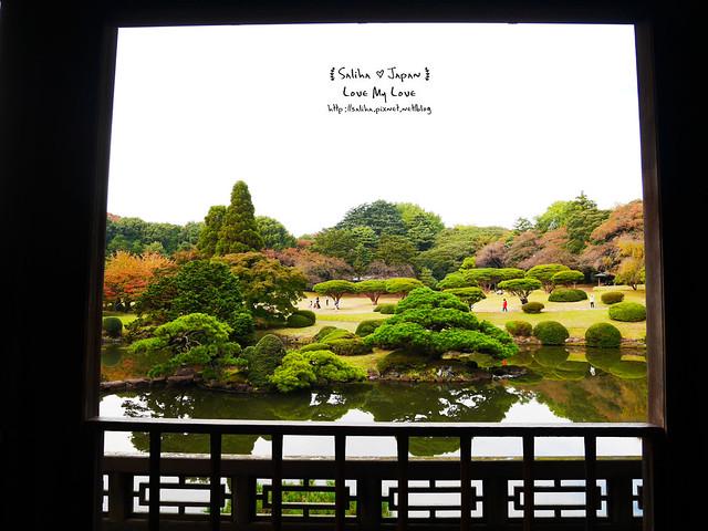 日本東京自由行新宿御苑庭園景點 (42)