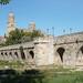 Roman Bridge - Salamanca by Neil Pulling