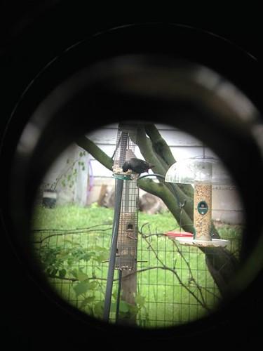 binocular fujinon iphone4s
