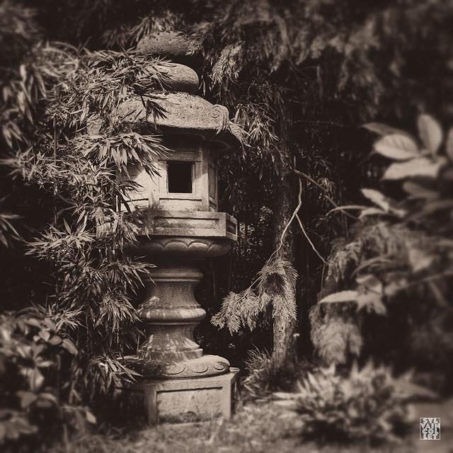 jardin d 39 albert kahn albert kahn garden flickr photo sharing. Black Bedroom Furniture Sets. Home Design Ideas