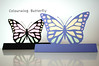 Colourwing Butterfly.. I designed these
