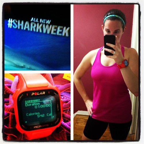 Kickass interval workout on the bike trainer while watching some #sharkweek. #teampolar