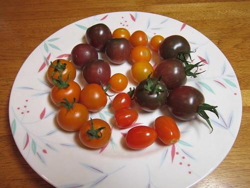 5種類のミニトマト 2013年8月17日 by Poran111