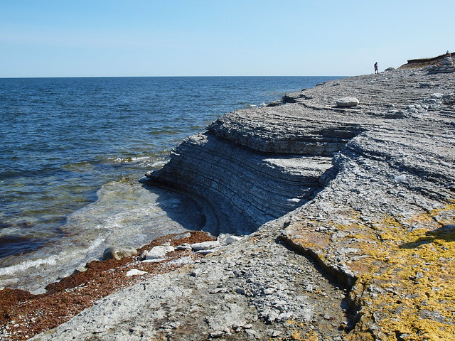 Limestone cliff on the east coast of Osmussaar, 3