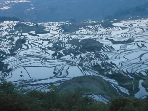 Yunnan13-Yuanyang 1-Duoyishu (7)