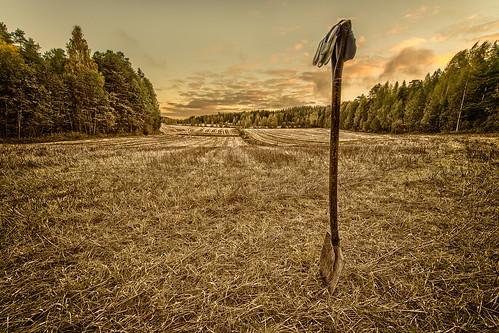 field sunrise suomi landscape nikon zoom fi nikkor dslr ultrawide 70200 32 hdr kuopio d800 pohjoissavo savilahti 1424mmf28 niuvantie
