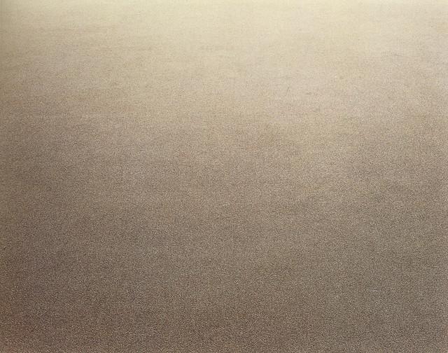 Untitled-1-Carpet