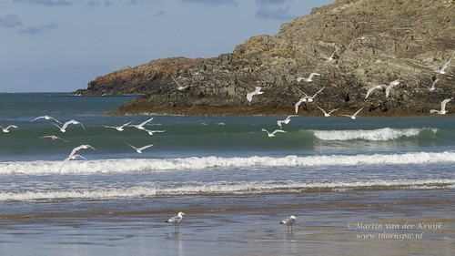 Pembrokeshire - Whitesands Bay -Wales