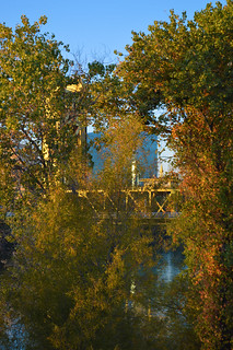 Sacramento_River_Bridge_And_Foilage