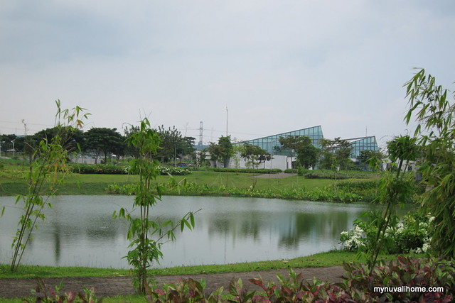 Around Nuvali Oct 2013 (6)
