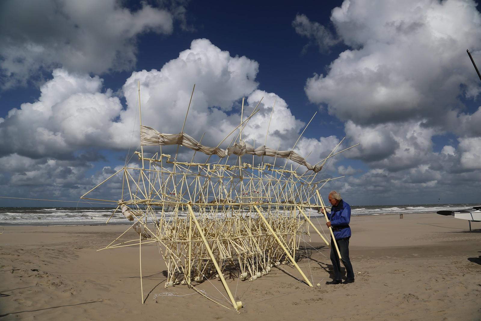 uros kirn 8 apodiacula at the silent beach 2013