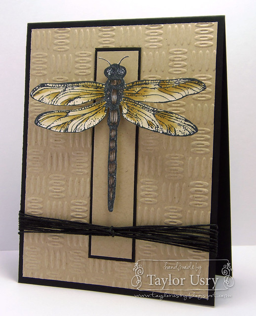 Dragonfly CASE