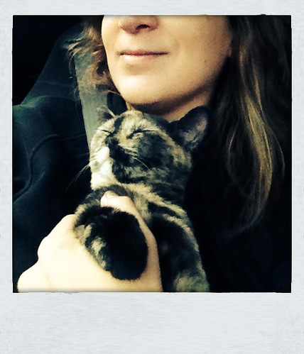 Cleo is cuddly and happy. #roadtrip