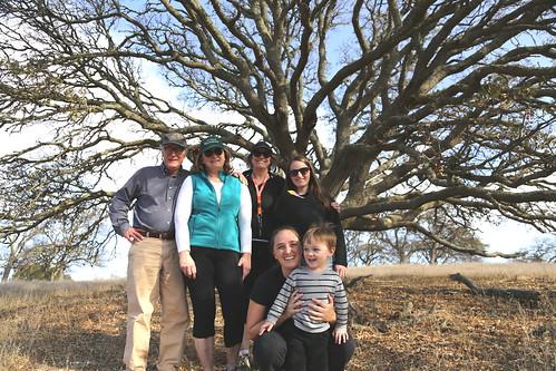 Under a big Oak