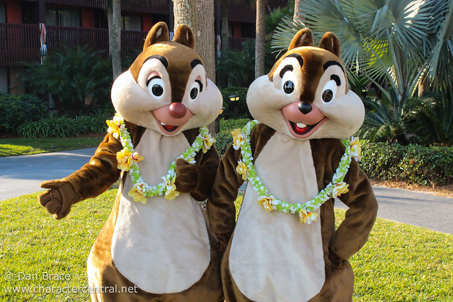 Meeting Chip and Dale
