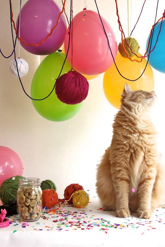 Cat Party with Catnip Yarn Balls | joy the baker