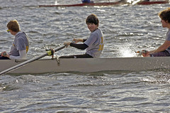 sports, rowing, recreation, outdoor recreation, watercraft rowing, boating, water sport, paddle,