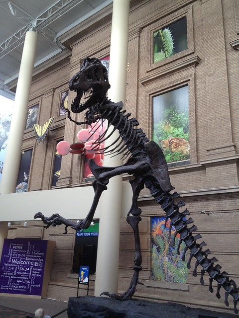 Picture from Denver Science & Nature Museum