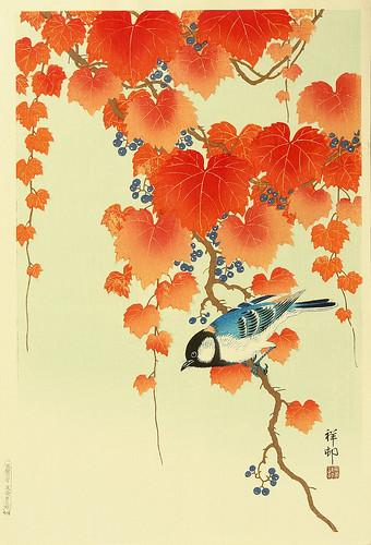 021-Pájaro en Paulownia-1934-Ohara Koson -via-Ukiyu-e-org