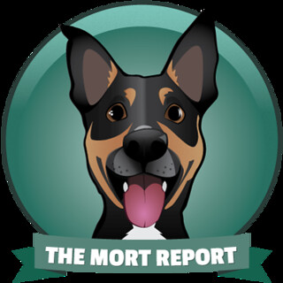 The Mort Report