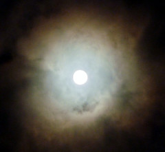 Moon July 11, 2014, 2