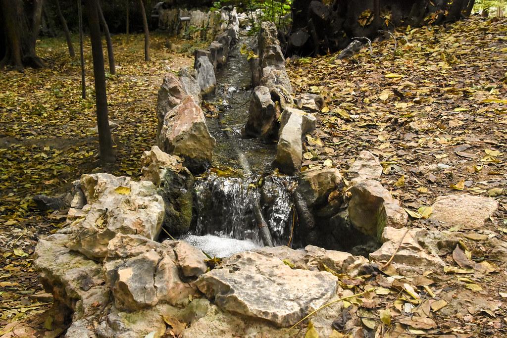 Water Streams Run Across the Whole Park
