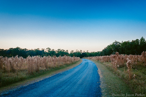 twilight coltcreekstatepark lakeland evening sunset longexposure vsco vscofilm retro vintage outdoor landscape scenic road sky polkcounty coltcreek rural country florida centralflorida prairie grass