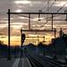 """""""Time to leave..."""" by Dirk van der Veen"""
