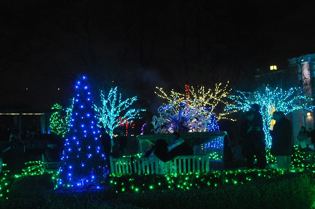 Christmas Light Atlanta Botanical Garden 2012 Atlanta