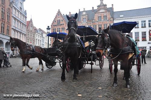 Carro de cavalls per Brugges