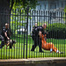 CODEPINK activists & allies arrested at White House demanding closure of Guantanamo Prison by TCHallMedia
