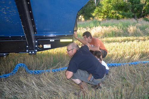 James Kaidence and Theo check out where best to hook the chain on the graincart to pull out the truck