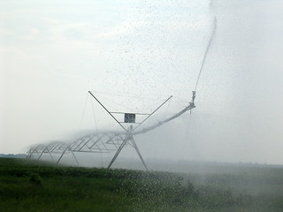 Picture of a field with irrigation system running.