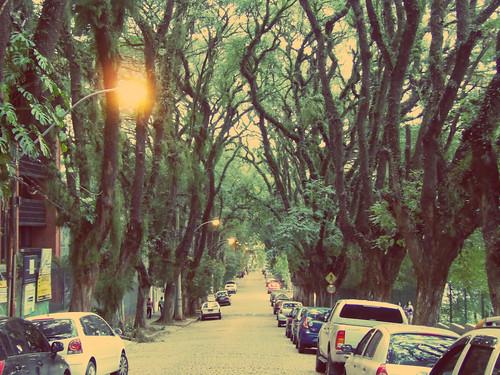 Zašto je ovo mnogima najlepša ulica na svetu? 9281535548_24f9e9476c