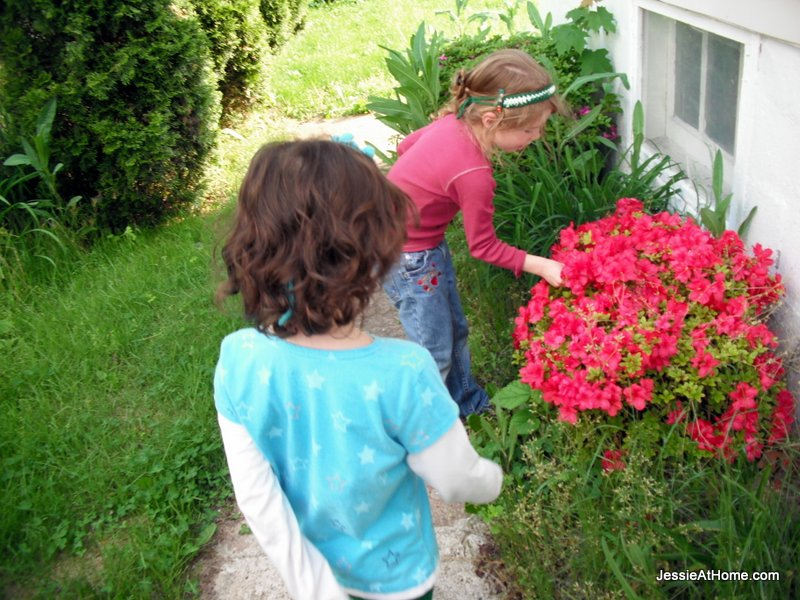 picking-flowers-beside-the-house