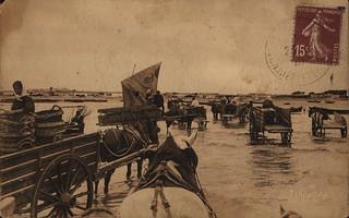 En attente des barques chargées de moules