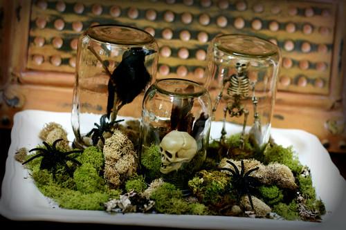 halloween terraniums, spooky crafts,