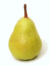 pear-bartlett