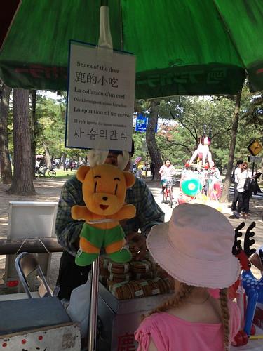 Nara Deer Park IMG_3303