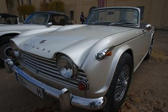 automobile, vehicle, triumph tr250, triumph tr5, performance car, triumph tr4, antique car, classic car, vintage car, land vehicle, convertible, sports car,